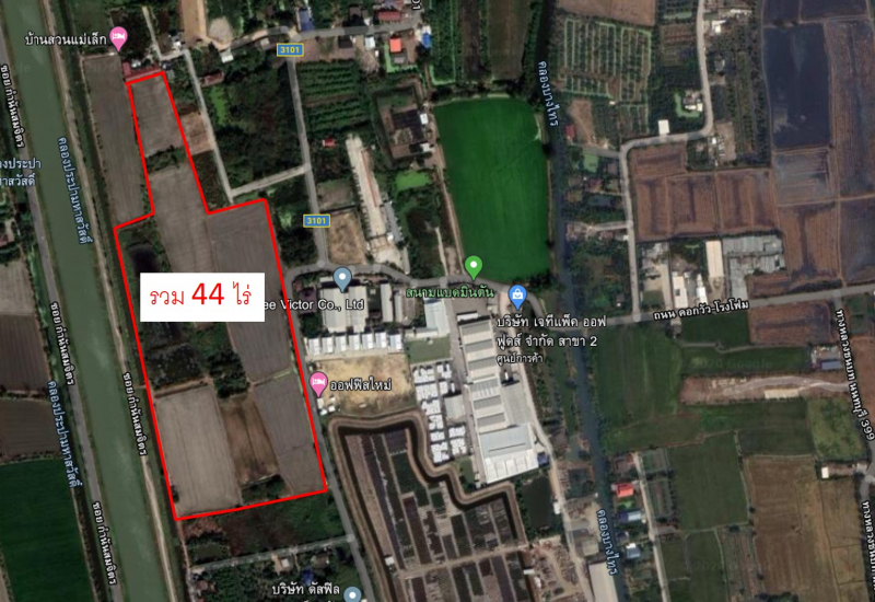 ขายที่ดินเปล่า ติดถนนบางแม่นาง บางใหญ่ นนทบุรี